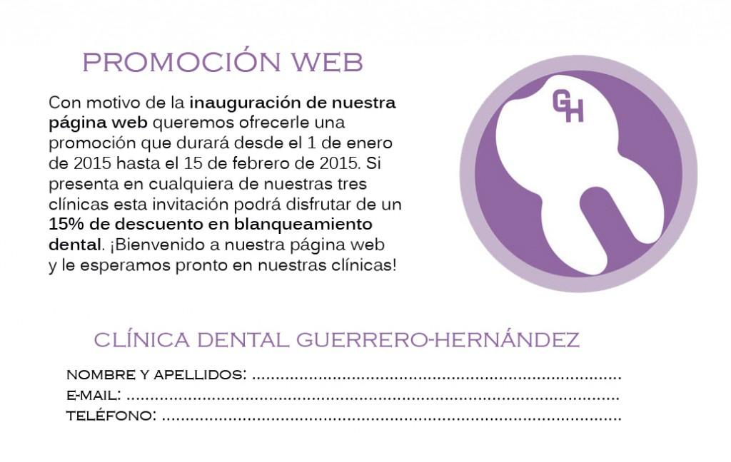 Promocion web Guerrero Hernandez