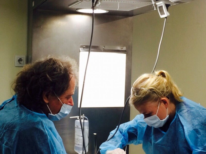 Formacion odontologos 8