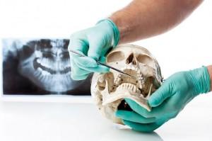 Curso Odontologos Valencia