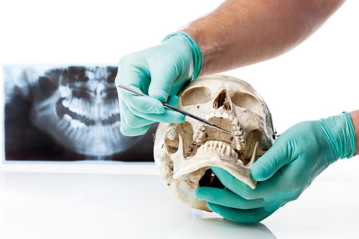 Curso de Cirugía Avanzada